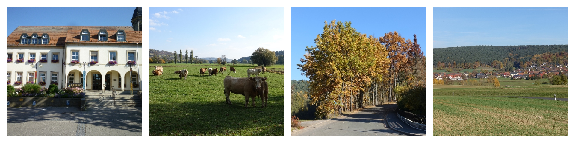 Herbst Collage 2019-3
